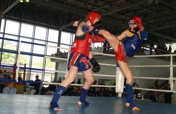 Как выбрать щитки для тайского бокса?