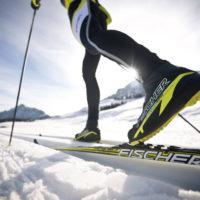 выбрать беговые лыжи