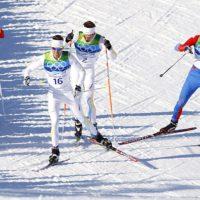 выбрать коньковые лыжи