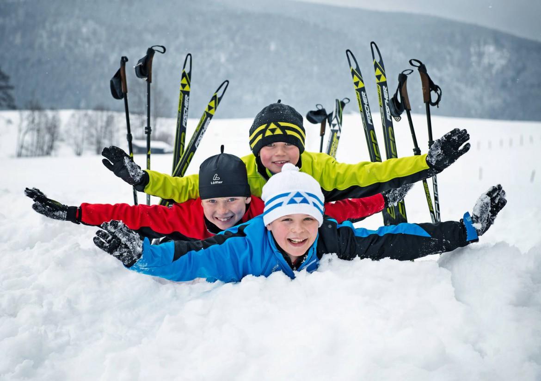 какие коньковые лыжи выбрать
